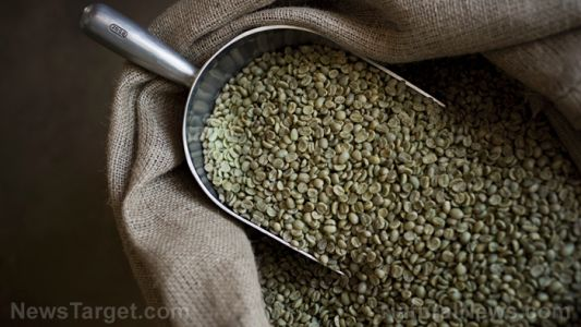 Green coffee can aid your weight loss goals