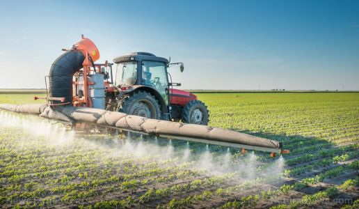 Pesticide exposure can lead to high blood pressure in children