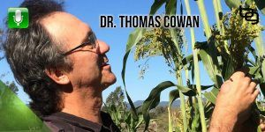 The Shocking Story Of Vaccines, The Toxicity Of Ultrasounds, Why You Shouldn't Play With Your Child & Much More With Dr. Thomas Cowan