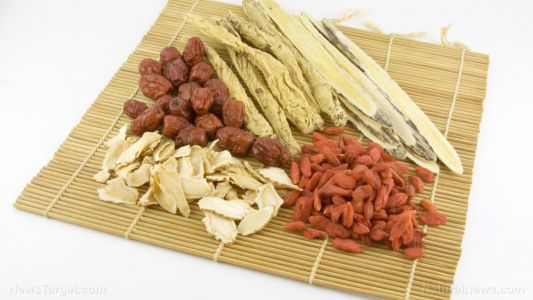 New study: Chinese folk medicine displays remarkable anti-arthritis activity