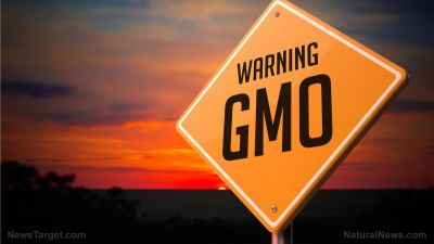 Science-based GMO website filters out corporate propaganda