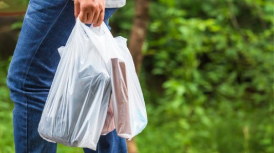 Plastic Bags Will Be Banned Next Year In NY, And Hopefully More States Follow Suit