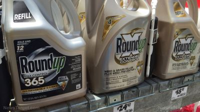 Cancer patient speaks out about the devastating effects Monsanto's Roundup has had on her life