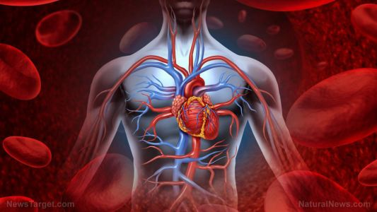 """Medical tests miss most heart attacks - nearly two-thirds are """"unrecognized"""""""