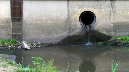 California's environmental policies have left children swimming in sewage