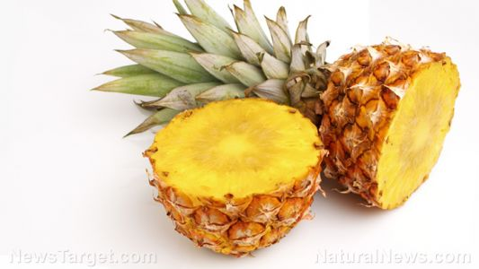 Vitamin-rich pineapple fruit hosts a variety of health benefits that make it a REAL superfood
