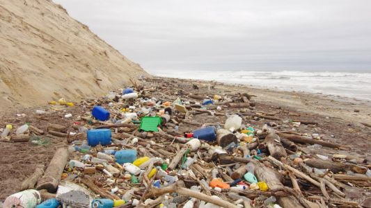 U.K. scientists call on public to help track and map plastic pollution on local beaches
