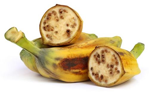 A banana a day keeps the doctor away? Study suggests wild banana species may have anti-diabetic properties