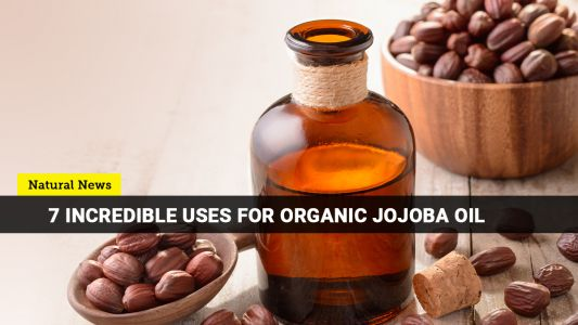 Organic Jojoba oil is so versatile that it can serve as your all-around skin and hair solution