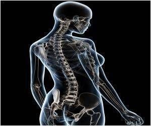 Hormone Therapy for Menopause may Reduce Spinal Curvature