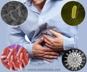 Foodborne Pathogen Sheltered by Harmless Bacteria That Support Biofilm Formation: Study