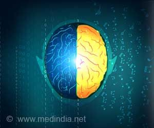 Musical and Bilingual Knowledge Can Improve Brain Function