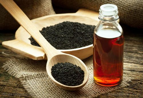 Black cumin oil combined with a low-calorie diet can modulate hormone secretion in obese women