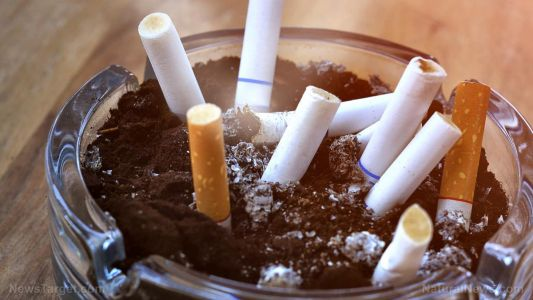 Smoke damages the liver and brain; even THIRDHAND
