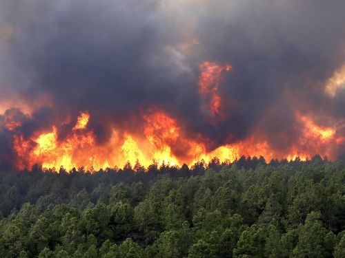 NASA data refute leftist climate wildfire claims: Global fires dropped by 25% from 2003 to 2019