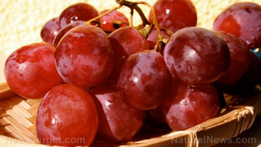 Study reveals that intake of dietary grape powder can help promote cytokine production