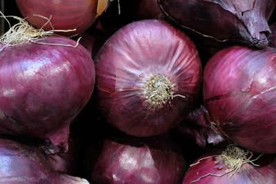 Red onions found to fight cancer more powerfully than yellow or white onions