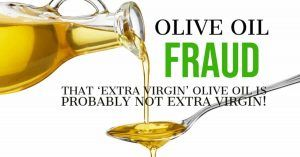 Which are the Best Olive Oils to Buy? Learn About the Olive Oil Fraud