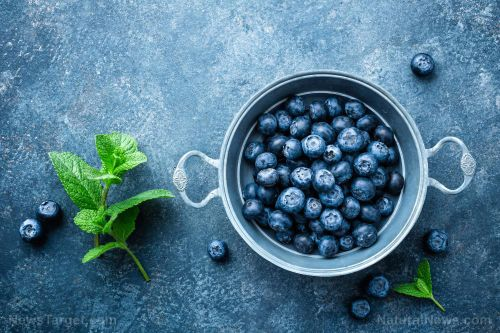 Add blueberries to your diet to maintain healthy blood pressure levels