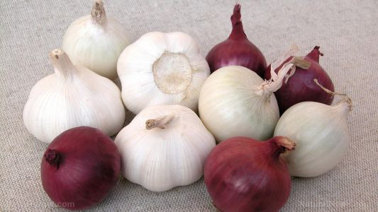Munching on onions and garlic can reduce colorectal cancer risk, according to study