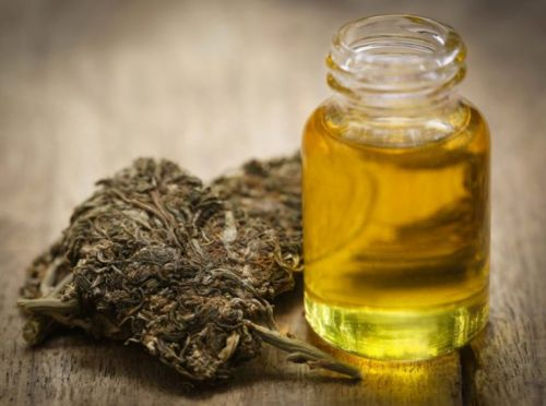 Marijuana eases 11-year-old girl's seizures and symptoms, caused by chemo treatment for leukemia