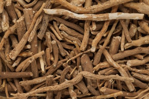 Ashwagandha, ginseng found to mimic off-label anti aging effects of two drugs