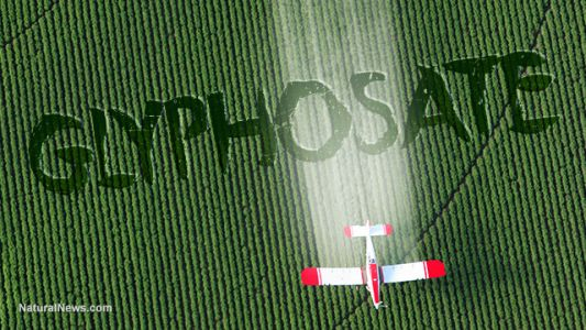 The link between glyphosate exposure and autism