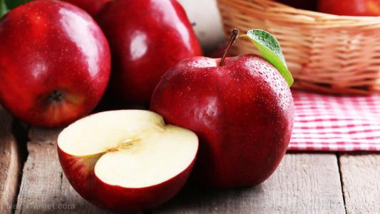 Apple ethanol extract found to improve adult stem cell therapy