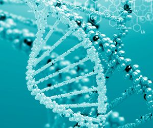 Four-stranded DNA's Role in Breast Cancer Revealed