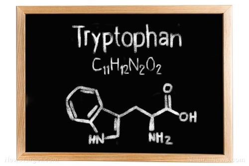 Do you have enough tryptophan in your diet?