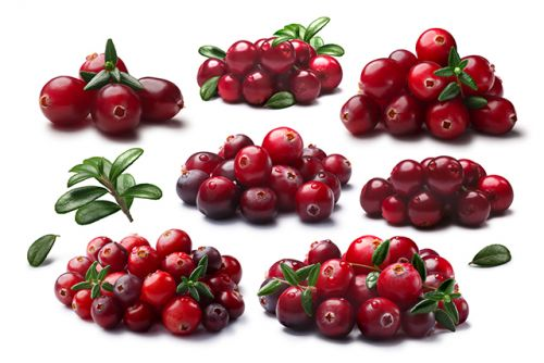 Anthocyanins, abundantly found in berries, treat insulin resistance while managing cholesterol levels