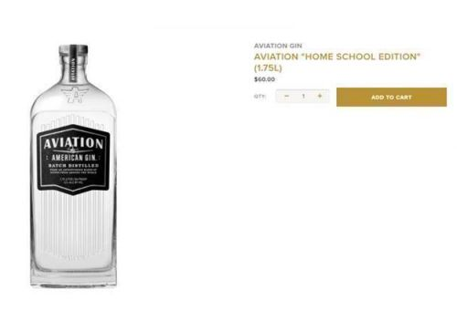 Ryan Reynolds Advertises Aviation Gin 'Home School Edition'