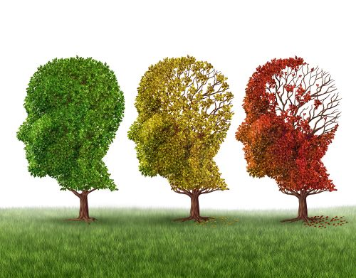 FDA Modernizes Approach to Alzheimer's Research