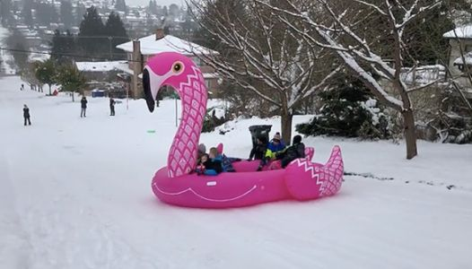 Sledding On An Actual Sled Is So 2018 - Try A Giant Pool Float Instead