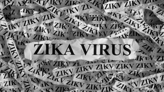 Zika virus found to linger for months in sperm cells, even after blood, urine tests are clear