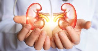 Diet and Supplement Options for Kidney Disease