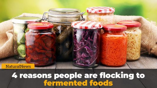 4 reasons people are flocking to fermented foods