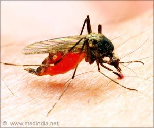 Researcher Warns of Need for Malaria Drug to Treat Severe Cases in U.S