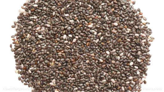 Chia seeds: Understanding the health benefits of this Aztec superfood