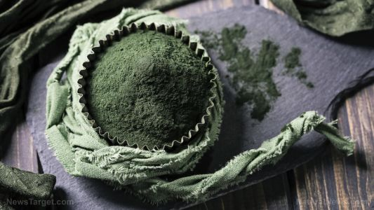 Study: Supplementing with spirulina helps modulate body weight and appetite
