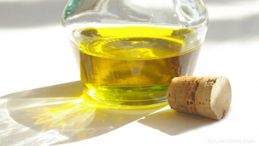 Water filtration membranes can be made from vegetable oils, researchers find