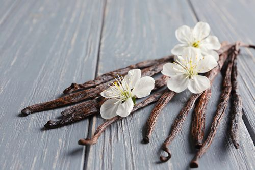 Sweet! Compounds in vanilla extract found to be an effective alternative therapy for postmenopausal osteoporosis