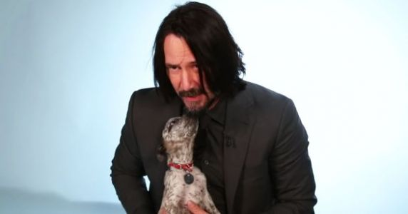 Keanu Reeves Playing With Puppies Is Your New Favorite Thing