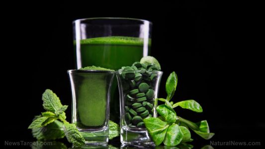 Could this be the most powerful superfood on the planet?