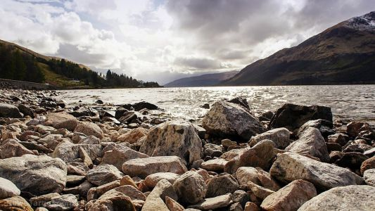"""Researchers tease """"surprising"""" DNA results of Loch Ness study"""