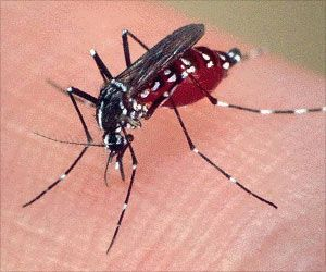 Malaria Discovery May Aid to Treat HIV and Lupus Better