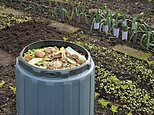 Killer lung infection that lurks in your compost
