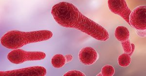 IDSA, SHEA update guidance for managing patients with C. difficile