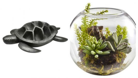 10 Gifts For People Who Are Obsessed With Succulents