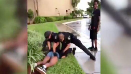 Video Shows Florida Cop Punching 14-Year-Old Girl Pinned To The Ground